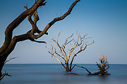 Dawn breaks over Boneyard Beach at Botany Bay Plantation July 11, 2014 in Edisto Island, South Carolina. Each year 144,000 cubic yards of sand is washed away with the waves at the beach and nearshore eroding the coastal forest along the beachfront.