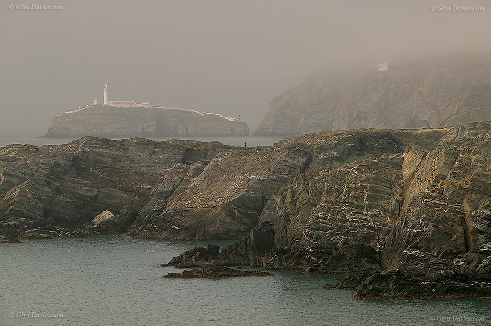 After a hot sunny walk around from the cove at Porth Dafarch, we were confronted with this eerie, mist covered rocky landscape at South Stack. It was bizarre because everywhere else was just so hot and sunny. The sound of the foghorn helped to let us know it was lost in the mist!