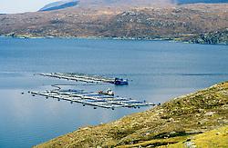 Salmon cages on fish farm Maraig Harris Outer Hebrides Scotland