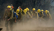 Greeley Hill, California-- July 30, 2008-Telegraph Fire-Wildfires Threaten Yosemite National Park.KernCounty Hot Shot fire Crew return after shift of cutting fire line on Division L.  Division L is on the leading edge of the fire and is threatening Greeley Hill..Photo by Al GOLUB/Golub Photography