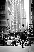 A Chicago police officer patrols the streets of downtown Chicago on horseback. Missoula Photographer