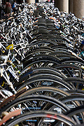 Het fietsenrek voor het Centaal Station in Utrecht.<br /> <br /> The bike park near Utrecht Central Station .