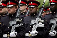 UK Troops/Soldiers