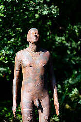 """Antony Gormley """"6 Times"""" """"Sky"""" sculpture in the Water of Leith in Edinburgh, Scotland, UK. comprising six life-size figures, positioned between the  the Scottish National Gallery of Modern Art and Leith Docks. - Editorial Use Only _"""