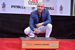 Pitbull attends the Hand And Footprint Ceremony Honoring him at TCL Chinese Theatre on December 14, 2018 in Hollywood, CA, USA. Photo by Lionel Hahn/ABACAPRESS.COM
