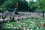 Central Park in New York City streching from 59th Street to 110th Street. An 843 acre park established in 1859.