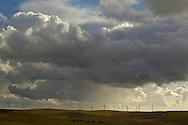 Power generating windmills in wind farm fields, below dark grey thunderstorm clouds, Montezuma Hills, California