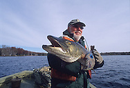 Fisheries Management-FWS and Menominee Tribal Fisheries biologists net and measure muskie on Wisconsin's Legend Lake.<br /> <br /> ENGBRETSON PHOTO