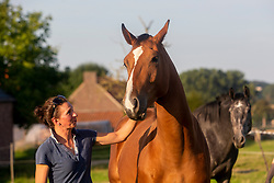 Fokkers Indiana<br /> Reportage Equitime 2021<br /> © Hippo Foto - Sharon Vandeput<br /> 7/09/21