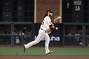 San Francisco Giants shortstop Brandon Crawford (35) catches a short hit during Game 3 of the NLDS against the Chicago Cubs at AT&T Park in San Francisco, Calif., on October 10, 2016. (Stan Olszewski/Special to S.F. Examiner)