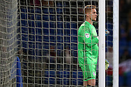 Ben Amos . the Cardiff city goalkeeper in action .EFL Skybet championship match, Cardiff city v Sheffield Wednesday at the Cardiff city stadium in Cardiff, South Wales on Wednesday 19th October 2016.<br /> pic by Andrew Orchard, Andrew Orchard sports photography.
