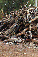 Burkina Faso, Ouagadougou, 2007. Dwarfed by a pile of firewood, an exhausted boy rests in the late afternoon.