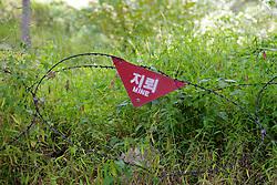Mine Fence at DMZ Tour