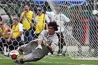 20100125: SAO PAULO, BRAZIL - Sao Paulo FC vs Santos - Sao Paulo Youth Cup 2010 Final. Sao Paulo FC won on the penalty shootout. In picture: Richard (Sao Paulo goalkeeper), the man of the match. PHOTO: CITYFILES