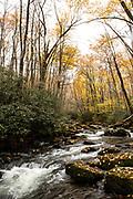 Long exposure, Waterfalls, QC Mountain Leaves 2020