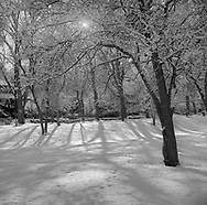Cannon Hill Park, Spokane