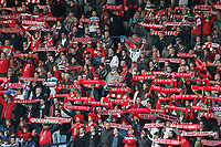 FOOTBALL - FRENCH CHAMPIONSHIP 2011/2012 - L1 - LILLE OSC v SM CAEN - 7/05/2012 - PHOTO CHRISTOPHE ELISE / DPPI - FANS (LOSC)