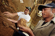 Archaeologist Thomas Sutikna (rear) works with a Manggarai excavator to recover Stegodon remains from Liang Bua cave, discovery site of the Flores hobbit, Homo floresiensis