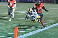Avon Eagles vs. Toledo Central Catholic varsity football on November 16, 2018. Image © David Richard and may not be copied, posted, published or printed without permission.