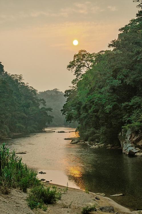 Jungle sunset.
