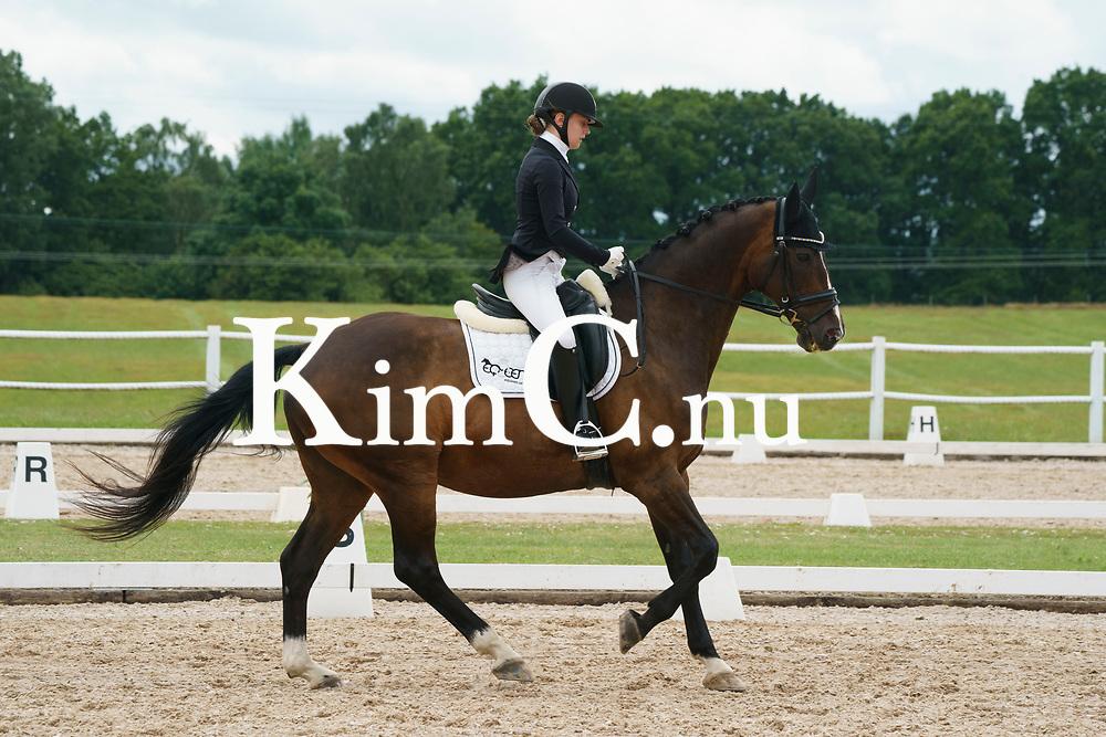 Chadon (Don Primero– Chapman (SWB)) Julia Enqvist Foto: KimC.nu by Kim C Lundin