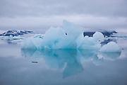 Calved icebergs at dusk floating in Hornsund, Svalbard.