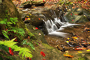 """Deer Lick Falls in the Fall<br /> <br /> Available sizes:<br /> 18"""" x 12"""" print or canvas print<br /> See Pricing page for details. <br /> <br /> Please contact me for custom sizes and print options including canvas wraps, metal prints, assorted paper options, etc. <br /> <br /> I enjoy working with buyers to help them with all their home and commercial wall art needs. as a mousepad or greeting cards."""
