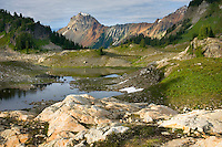 Alpine basin of Yellow Aster Butte, American Border peak in the distance (2437 meters 7995 feet), Mount Baker Wilderness Washington USA beauty in nature