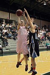 08 February 2014:  Shelby Jackson during an NCAA women's division 3 CCIW basketball game between the Elmhurst Bluejays and the Illinois Wesleyan Titans in Shirk Center, Bloomington IL