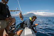 The crew of a whale watching tour operator in Pico Island, Azores, Portugal, North Atlantic Ocean, uses a hydrophone to locate a pod of Sperm Whales, Physeter macrocephalus. No model release.