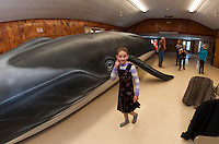 "Evelyn Smith counts the steps around ""Ladder"" the 65 foot whale from Blue Ocean Society for Marine Conservation during a presentation by Abby Gronberg on Sunday afternoon at the Leavitt Park clubhouse.  (Karen Bobotas/for the Laconia Daily Sun)"