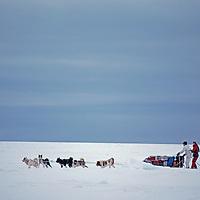 A polar hunter's dog sled crosses a frozen fjord on Spitsbergen Island.