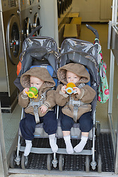 Twins in buggy at launderette. (This photo has extra clearance covering Homelessness, Mental Health Issues, Bullying, Education and Exclusion, as well as the usual clearance for Fostering & Adoption and general Social Services contexts,)
