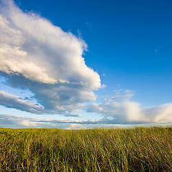 Clouds above Long Beach in Stratford, Connecticut.  Adjacent to the Great Meadows Unit of McKinney National Wildlife Refuge.
