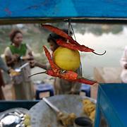 A 'good luck' decoration piece on a street food cart in Dantewada, southern Chhattisgarh, January 2007 for