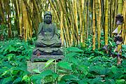 A stone statue in a bamboo garden on Kauai, Hawaii.