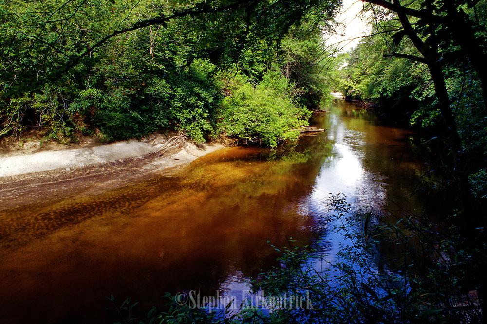 Red Creek in spring - Mississippi.