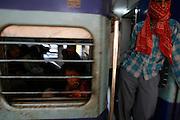 Photo by Heathcliff Omalley..Mughal Serai, Uttar Pradesh, India..Passengers on a train passing through Mughal Serain Train Station near the holy city of Varanasi, where many of the express trains from Dehli to Calcutta stop.