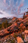 Dawn Clouds, Wheeler Peak and Paintbrush, Great Basin National Park, Nevada