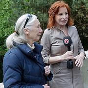 NLD/Amersfoort/20120518 - Persconferentie Jane Goodall, Marian Mudder interviewt Jane