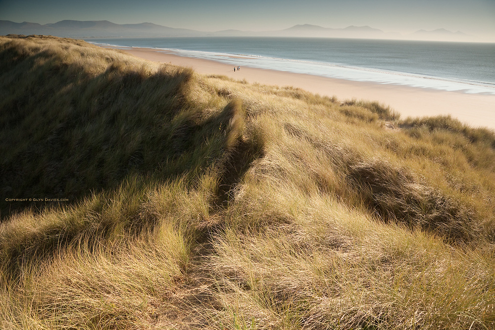 Three walkers at Llanddwyn Beach, a vast open sand dune backed sandy beach, stretching for miles at this West edge of Anglesey, and Caernarfon Bay. The Llyn Peninsula and Yr Eifl is seen in the distance.