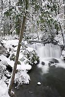 Fresh winter snow at Whatcom Falls, Bellingham Washington USA