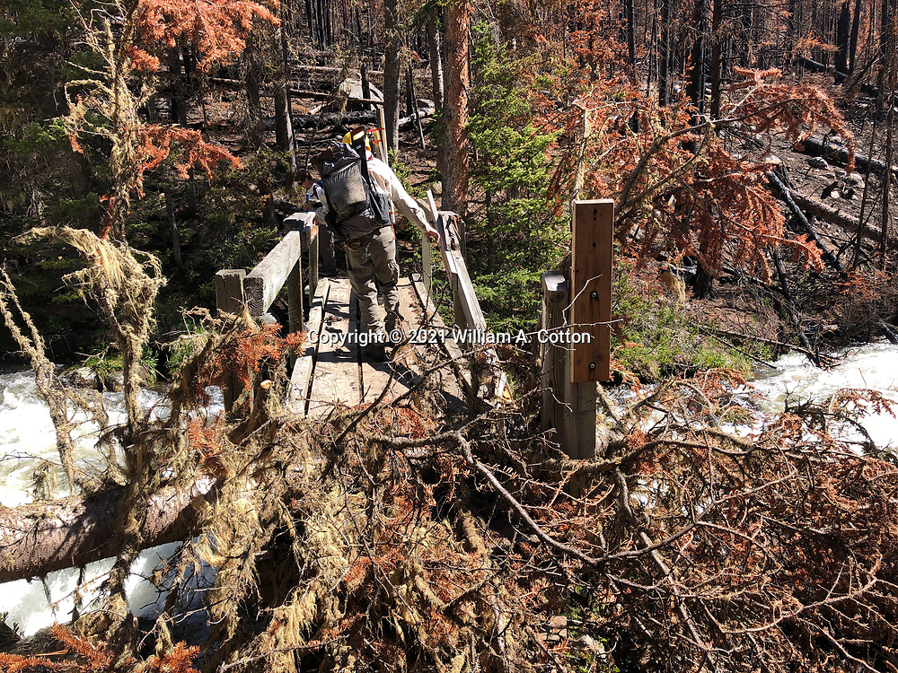 A Poudre Wilderness Volunteer assesses the damage to the bridge accross Fall Creek on the Blue Lake Trail, June 8, 2021, after the Cameron Peak Fire.