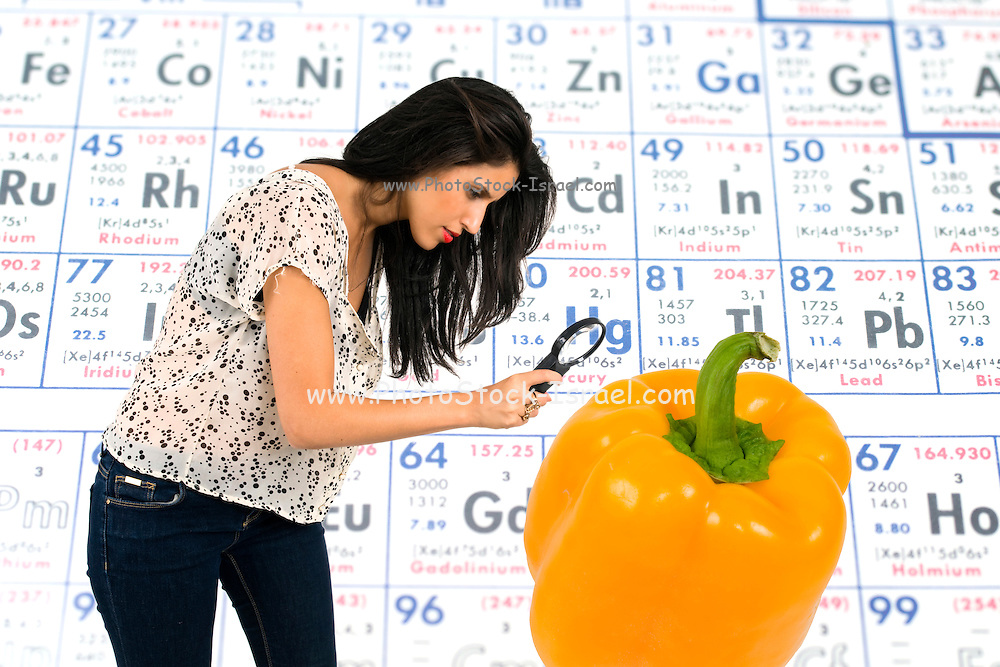 Woman with magnifying glass scrutinizes the face of a gigantic bio engineered bell pepper