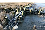 Waddenzee | Wadden Sea