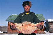 Darkhad man & fat-tailed sheep<br /> Mongolian race of sheep<br /> Darkhadyn Khotgor Depression<br /> Mongolia