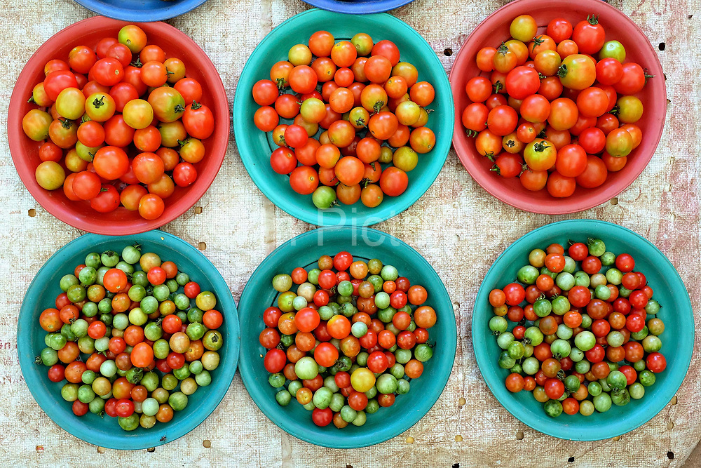 Tomatoes for sale at Hua Kua fresh market on the outskirts of Vientiane city, Lao PDR. A large variety of local products are available for sale in fresh markets all over Laos, all being sold on small individual stalls.