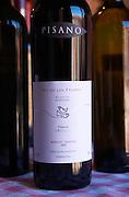 A bottle of Rio de los Pajaros Reserva Progreso Merlot and Tannat 2005. Bodega Pisano Winery, Progreso, Uruguay, South America