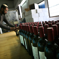 SETTLER'S BOUTIQUE WINE 2009...A Jewish settler organizes wine bottles after a sticking labels process at Tanya boutique winery in the West Bank Jewish settlement of Ofra, December 2009.