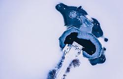 THEMENBILD - ein Wasserloch im zugefrorenen Zeller See an Ufernaehe mit einem Steg aus, aufgenommen am 27. Januar 2019 in Zell am See, Oesterreich // a water hole in the frozen Zeller lake on Ufernaehe with jetty in Zell am See, Austria on 2019/01/27. EXPA Pictures © 2019, PhotoCredit: EXPA/ JFK